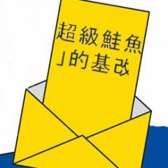 الوقائع الغريبة في مخطط التصويت للانتخابات المحلية