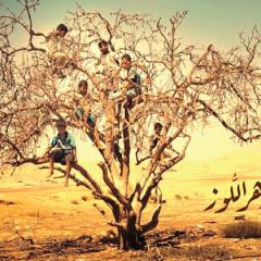 """ألبوم """"زهر اللّوز"""": بلغة الجمال تردّ الأغنية على الخراب/ أسماء عزايزة"""