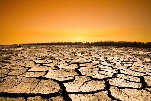 normal_drought