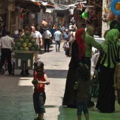 عن مدينتي العامودية وهربي الأفقيّ/ مايا أبو الحيات